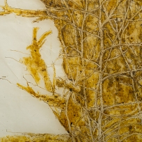 Detail, Strangletree, paper with beeswax, encaustic, ink and thread, 2015.