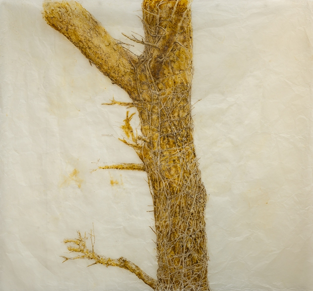 "Strangletree, 46""x50"" paper with beeswax, encaustic, ink and thread, 2015."