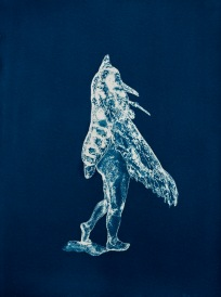 """Moth Lady, From the Archive of SIEN Collective, cyanotype from paper negative, 11""""x15"""", 2015 the Archive of SIEN Collective"""