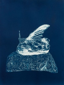 """Dead Things: Hummingbird, From the Archive of SIEN Collective, cyanotype from paper negative, 11""""x15"""", 2015"""
