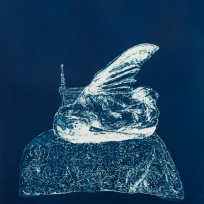 "Dead Things: Hummingbird, From the Archive of SIEN Collective, cyanotype from paper negative, 11""x15"", 2015"