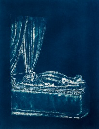 """Dead Things: Chipmunk, From the Archive of SIEN Collective, cyanotype from paper negative, 11""""x15"""", 2015"""