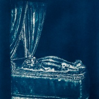 "Dead Things: Chipmunk, From the Archive of SIEN Collective, cyanotype from paper negative, 11""x15"", 2015"