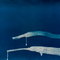 "Ripple 2, cyanotype from paper negative, 52""x 29.5"", 2015."