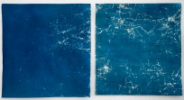 """Up and Down, cyanotypes from paper negatives, 28""""x26"""" and 27""""x26"""", 2015."""
